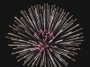 22fireworks-white-and-pink-starburst